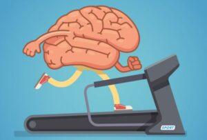 חדר כושר למוח